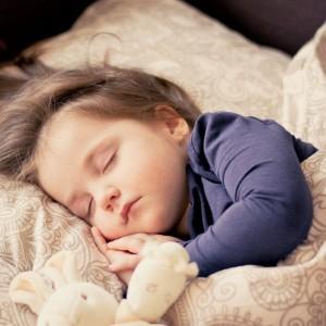 【最高の睡眠】なぜ人は「人生の1/3」も眠るのか?